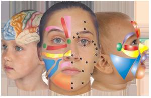 gezichtsreflexologie-haarlem-300